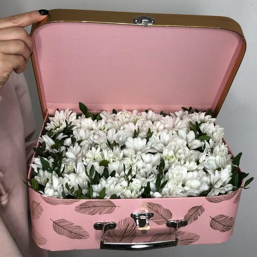 Daisies in a box-a suitcase
