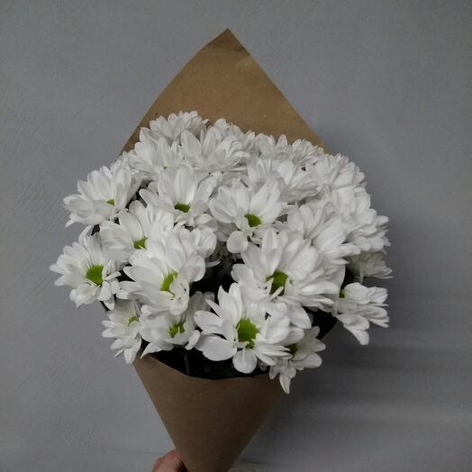 Хризантема кустовая белая в крафте