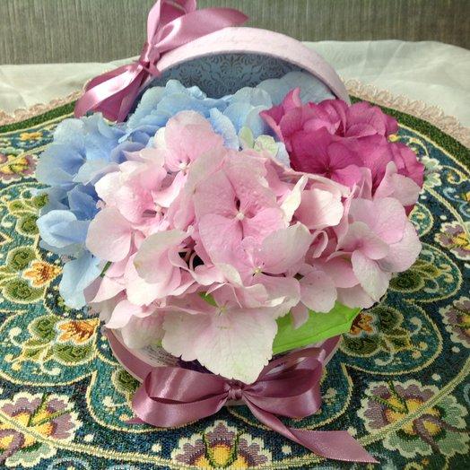 Великолепная гортензия: букеты цветов на заказ Flowwow