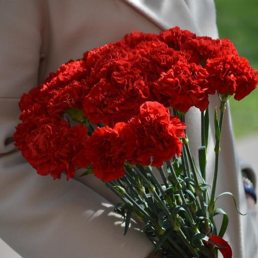 Красные гвоздики: букеты цветов на заказ Flowwow