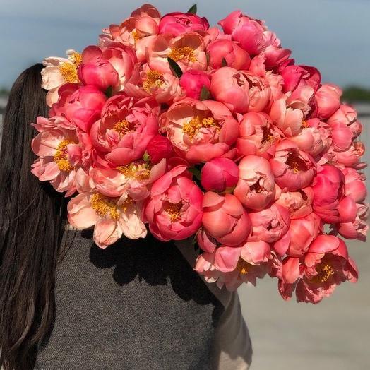 """Букет из 39 коралловых пионов """"Coral Charm"""": букеты цветов на заказ Flowwow"""