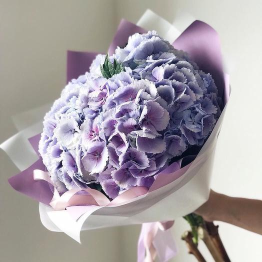 Фиолетовая небесная гортензия: букеты цветов на заказ Flowwow