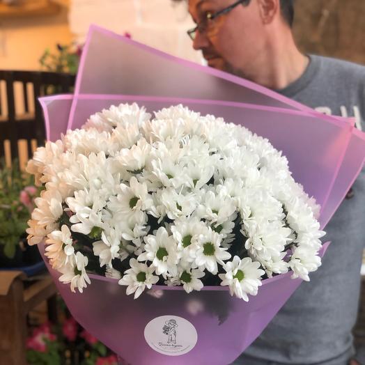 Хризантема белая 17 шт