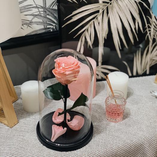 Роза в колбе большая
