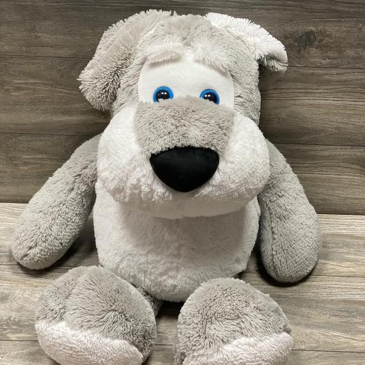Собака Спайк серый