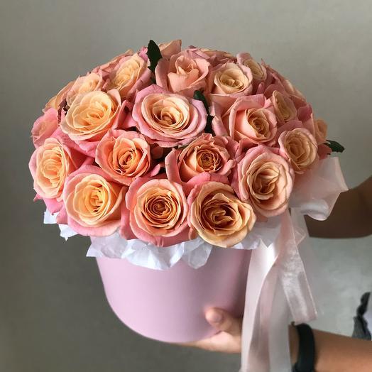 31 Роза Мисс Пигги