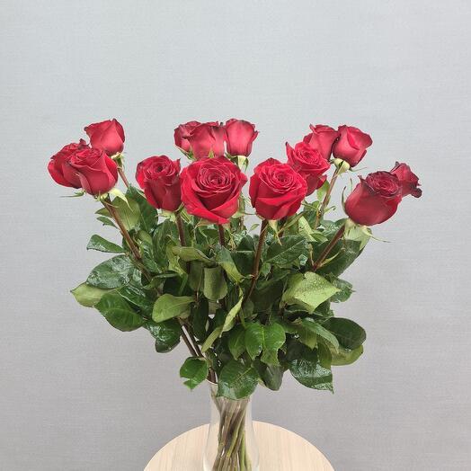 Роза 15  🌹