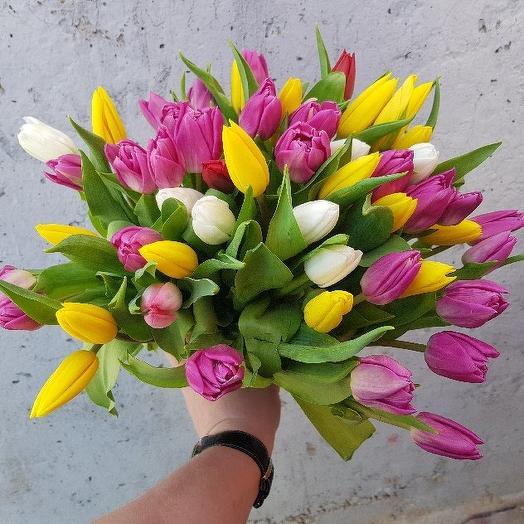 Букет из 51 разноцветного тюльпана: букеты цветов на заказ Flowwow