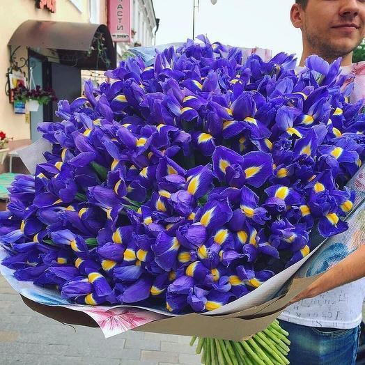 Ирисы 101 шт с дизайнерской упаковкой: букеты цветов на заказ Flowwow