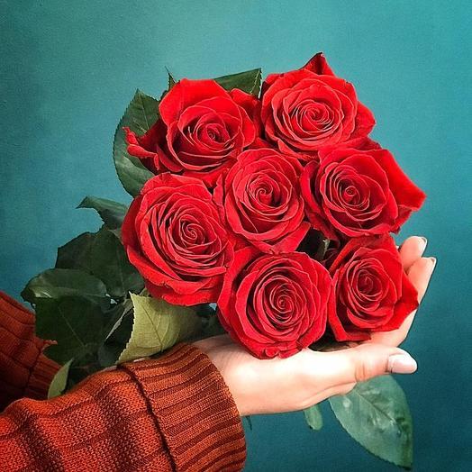 Монобукет из 7 роз Экспорер
