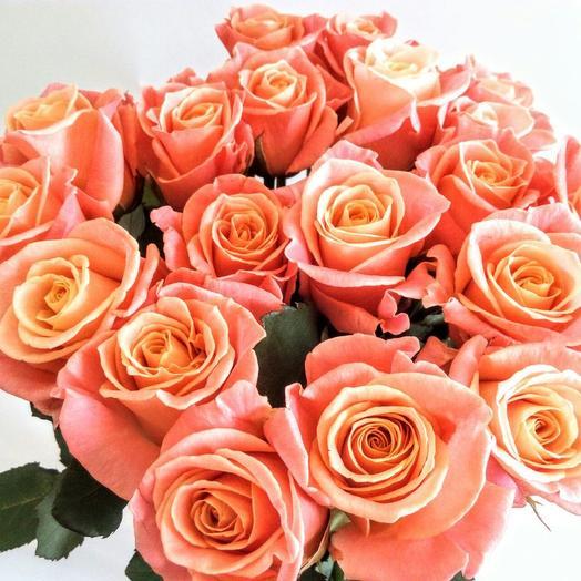 15 кораловых роз