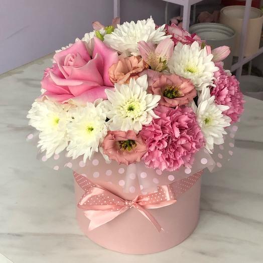 Розовые мечты🌸