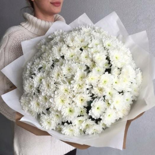 Белое облако хризантем