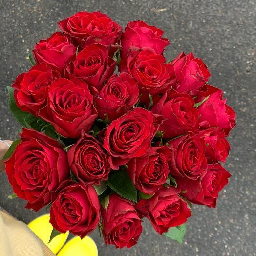 Моно из Кенийской Алой розы