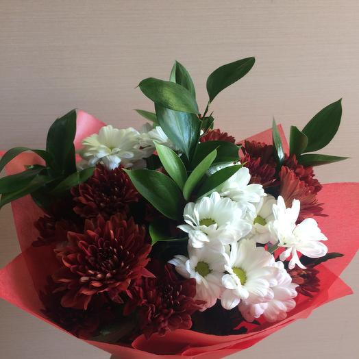 Бело-красные ромашки: букеты цветов на заказ Flowwow