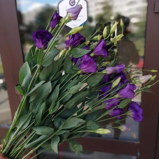 Purple eustoma: flowers to order Flowwow