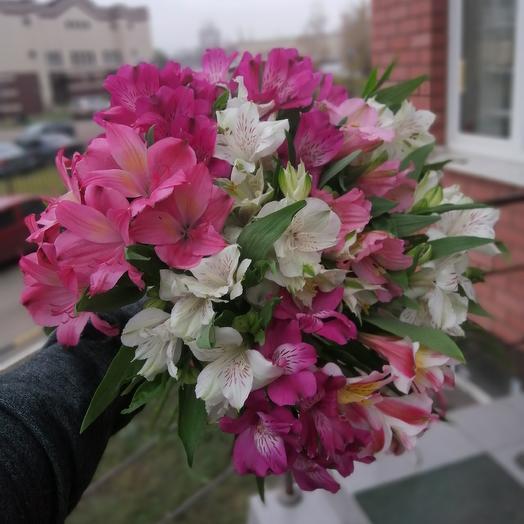 Чудесные альстромерии микс: букеты цветов на заказ Flowwow