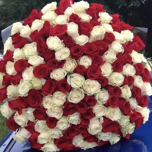 Голландские розы микс 101 шт: букеты цветов на заказ Flowwow