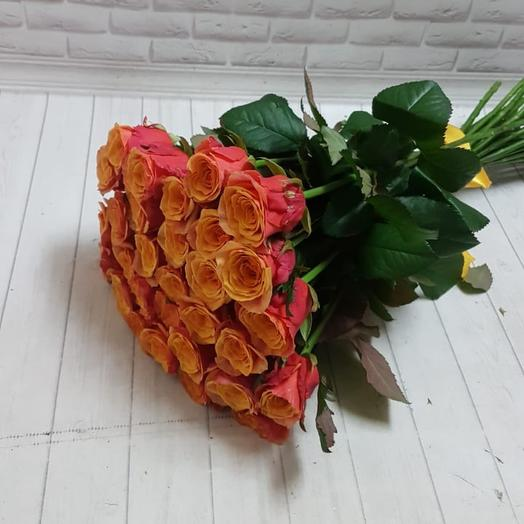 19 Роза