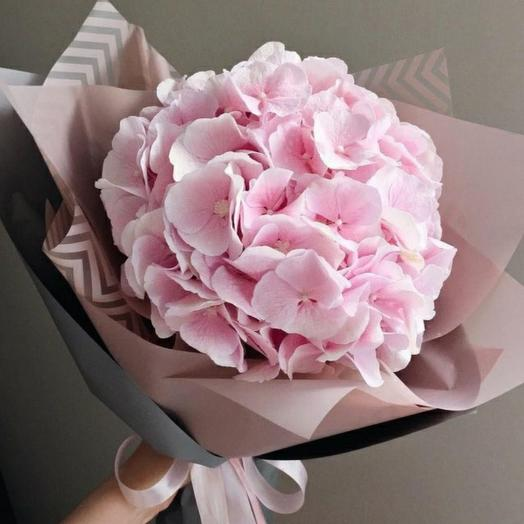 Pink hydrangea in a lush package
