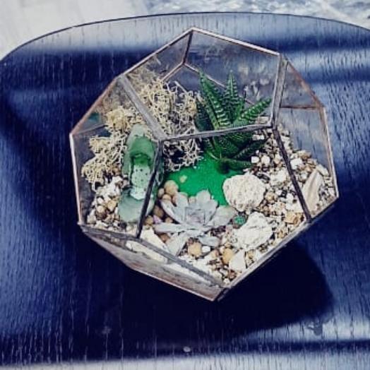 Флорариум суккуленты в песках