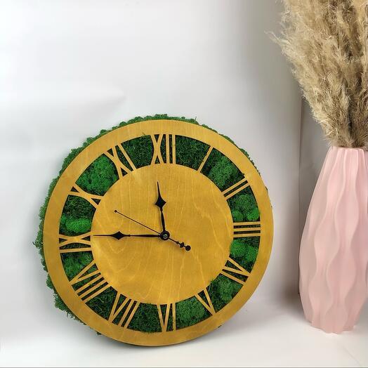 Часы и стабилизированный мох