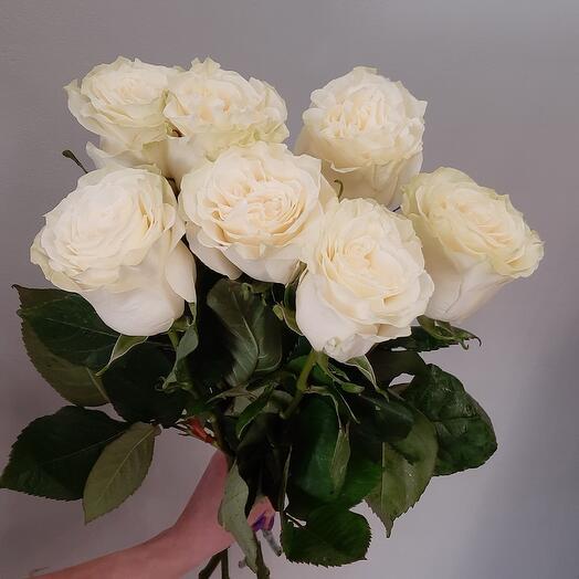 Роза 7шт под ленту