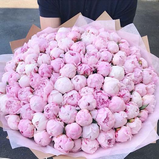 Пионы сара бернар в дизайнерской упаковке 101 шт: букеты цветов на заказ Flowwow
