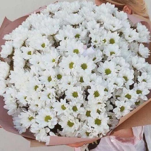 Светлана: букеты цветов на заказ Flowwow