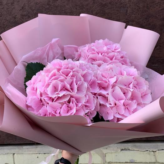 Букет из 3 пышных розовых гортензий