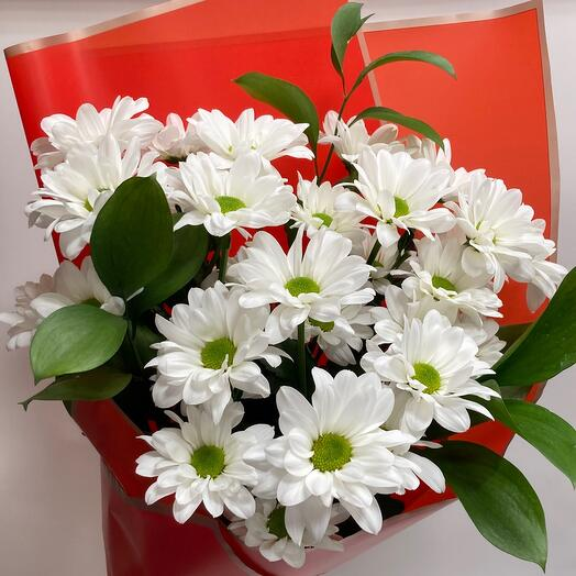 Белые кустовые хризантемы