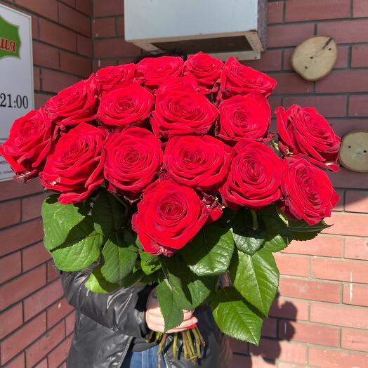 Роскошные розы ️🥰