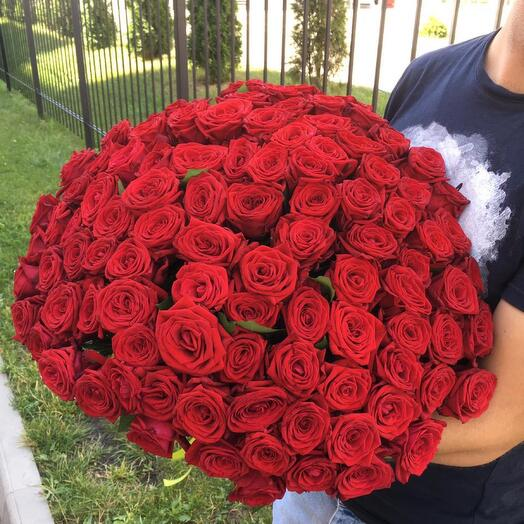 101 красная роза для нее 🔥🔥🔥