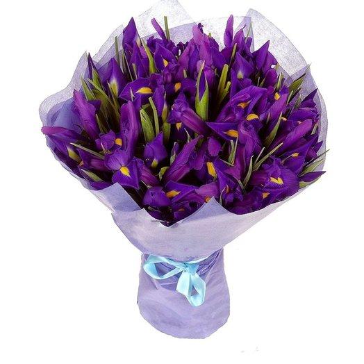Букет из 25 ирисов: букеты цветов на заказ Flowwow