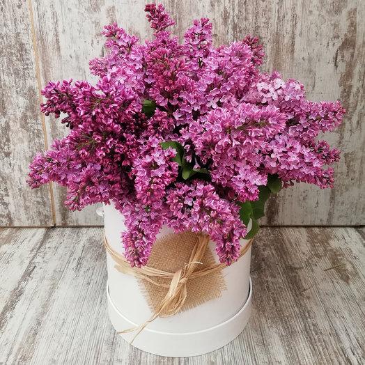 Сирень в шляпной коробке: букеты цветов на заказ Flowwow