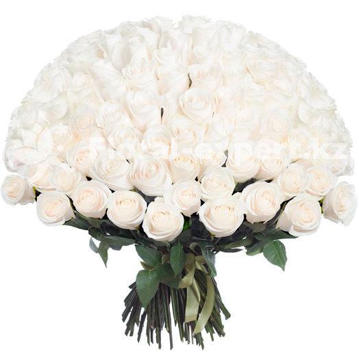 101 белая местная роза