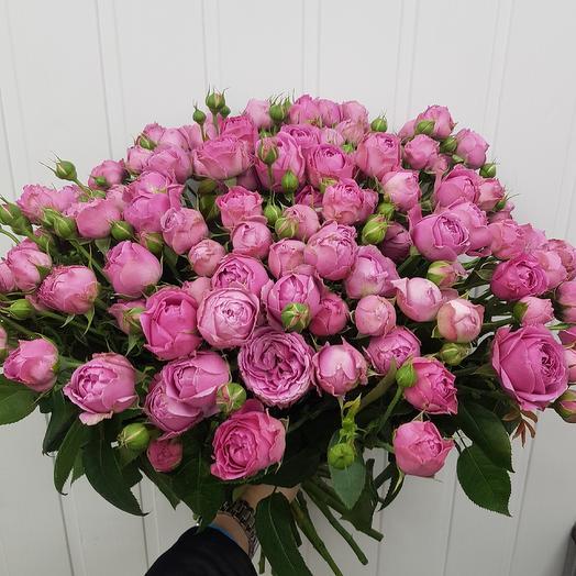 51 шт. Мисти Баблс: букеты цветов на заказ Flowwow