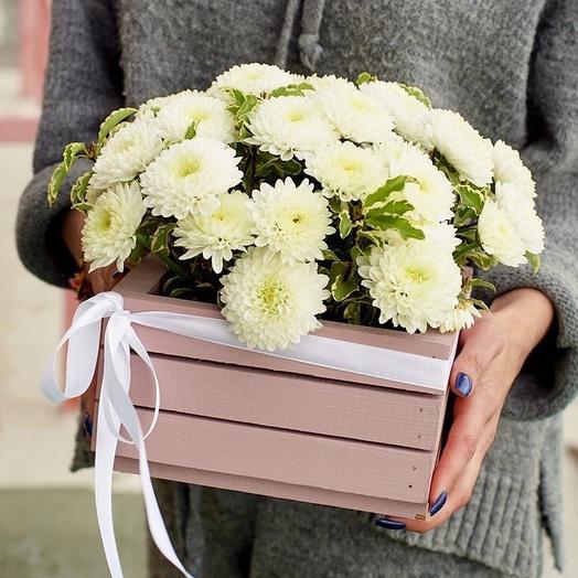Ящичек хризантем: букеты цветов на заказ Flowwow