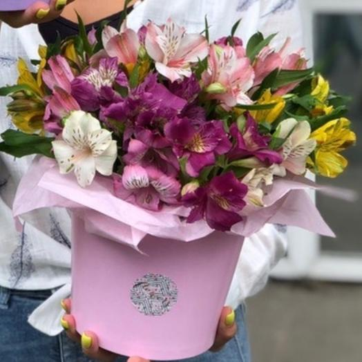 Ведерка с альстромерией: букеты цветов на заказ Flowwow