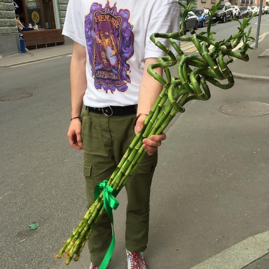 Бамбук по супер цене: букеты цветов на заказ Flowwow