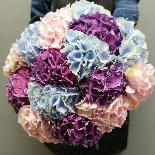 Гортензия микс: букеты цветов на заказ Flowwow