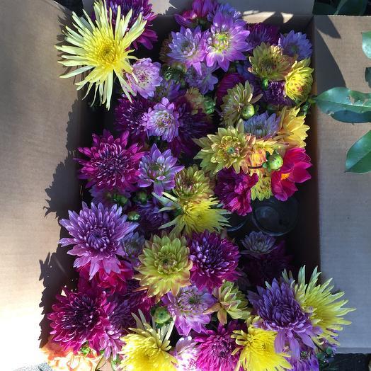Dahlias For Days: flowers to order Flowwow
