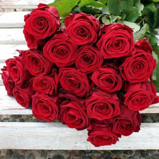 19 красных роз под ленту