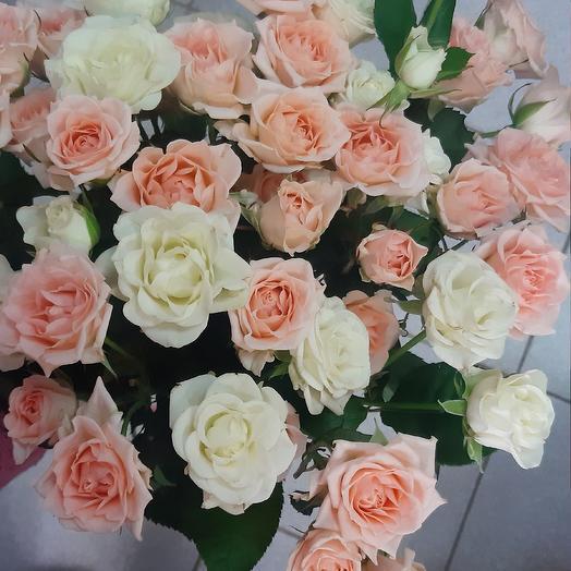 Кустовые розы российские