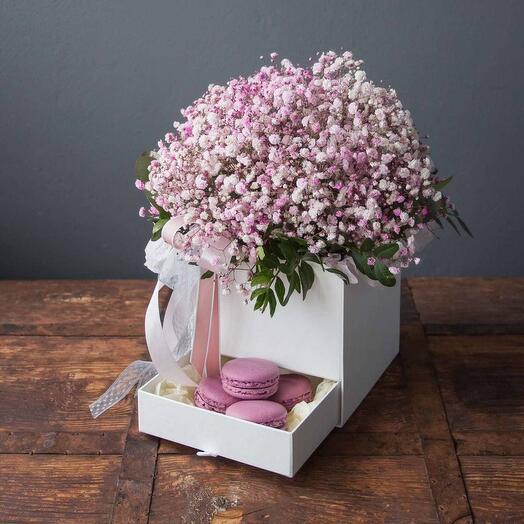 Коробка розовых гипсофил