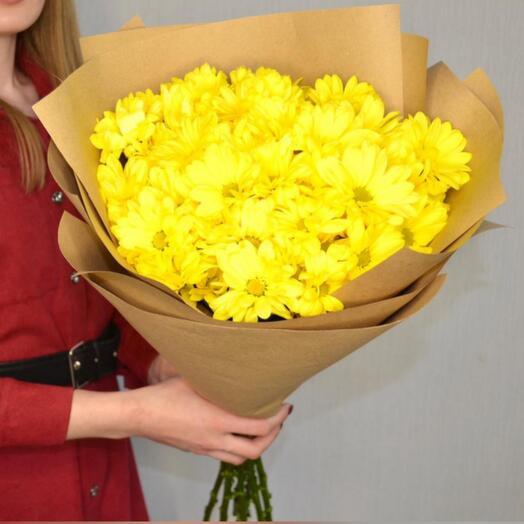 7 солнечных хризантем