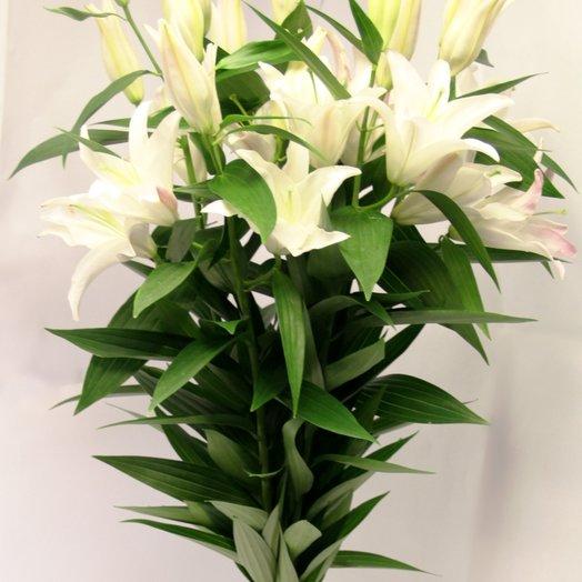 Лилия, 3 веточки кустовые: букеты цветов на заказ Flowwow