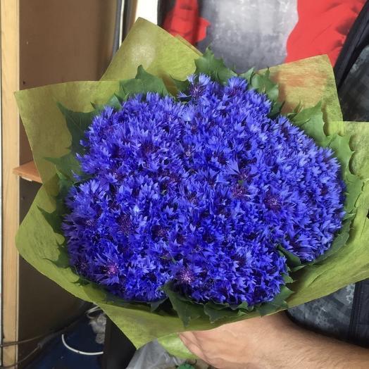 Букет васильков: букеты цветов на заказ Flowwow