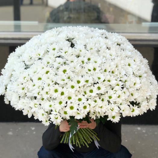 PREMIUM букет из 101 ромашки кустовой: букеты цветов на заказ Flowwow