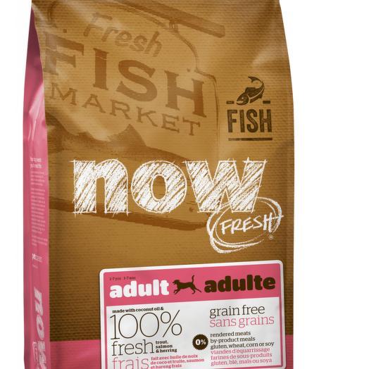 NOW FRESH беззерновой сухой корм для собак всех пород с форелью и лососем для чувствительного пищеварения 11,3 кг